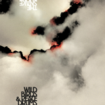 "Wildbirds & Peacedrums – ""The snake"""