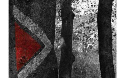 Paesaggi del Novecento nel CD di Miranda Cuckson e Blair McMillen (ECM)